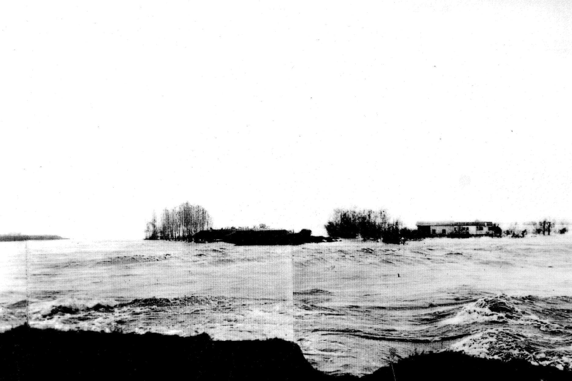 14/11/1951 Polesine