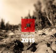 report-2015-thumb-410x371